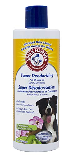 Dog Shampoo Odor Dog (Arm & Hammer Super Deodorizing Shampoo for Dogs | Best Odor Eliminating Shampoo for All Dogs and Puppies, 16 ounces, Kiwi Blossom Scent)