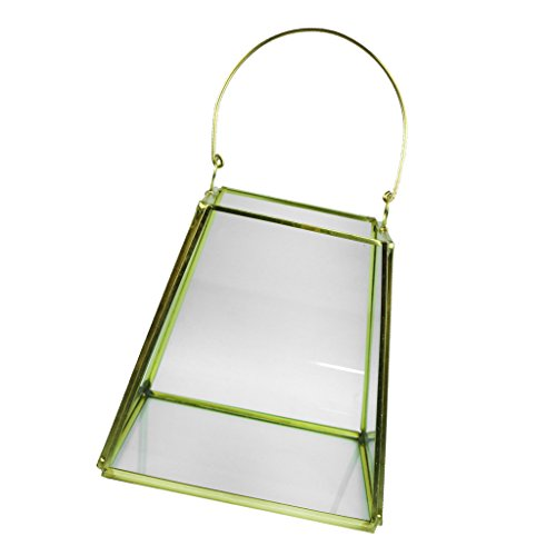 mini greenhouse with light - 9