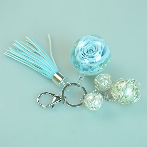 DeFancy Hand Made Preserved Flower Keychain Ornaments in Clear Plastic Fillable Globes (sky blue)