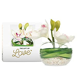 Orchid in Glass Bowl with White Pebbles (White)- Latex Real Touch Orchids- Hand Made-Petals Rich in Detail with Hand Painted Centres -Artificial Flowers- Gift Boxed 81
