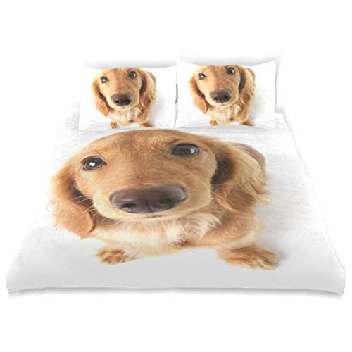 LORVIES Kids Funny Dachshund Dog Duvet Cover Set Breathable Twin Size Cover Decorative 3 Piece Bedding Set with 2 Pillow Standard Size Pillow Cover for Children Teens