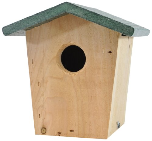 Backyard Boys Woodworking BBW21G Hanging Bird House with ...