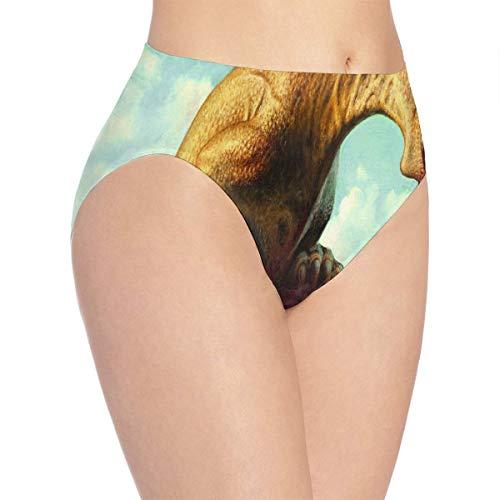 - Women's Bikini Dinosaur Eat Seamless Panties Fabulous Briefs for Lady/Girls White