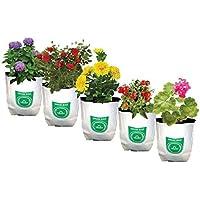 TrustBasket Small Poly Grow Bags UV Stabilized[20cms(L) x20cms(W) x35cms(H)]
