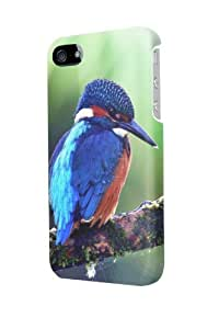 ip50422 Kingfisher bird Glossy Case Cover For Iphone 5/5S by Maris's Diary