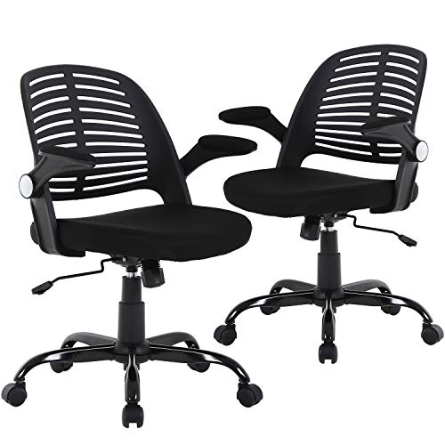 Computer Ergonomic Chair, HeavyDutyMetal Base Desk Chairs, Executive Adjustable Swivel Rolling Chair with Arms Lumbar Support Task Home Office Chair for Women, Men (Black, Set of 2)