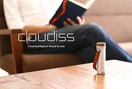 第7位:Cerevo『cloudiss(CDP-CL01A)』