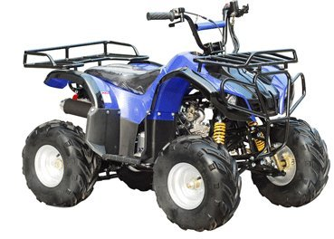 TAO TAO Brand New for 90% Assembled Model ATA 110D Fully Automatic 110cc Utility ATV - New Color : BOLD BLUE