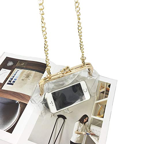 Mengsha's Transparent PVC Purse with Gold Color Clasp and Golden Chain