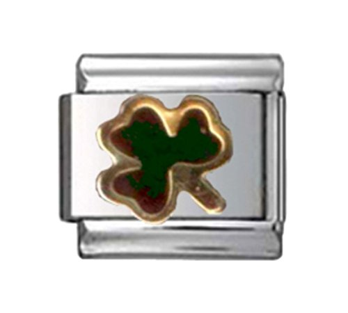 Stylysh Charms Irish Shamrock Mood Changing Enamel Italian 9mm Link NC166