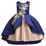SOMESUN Children's Sleeveless Dress Posing Flower Girl Dress Skirt Princess Pettiskirt Floral Baby Girl Princess Bridesmaid Pageant Gown Birthday Party Wedding Dress