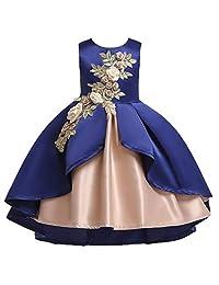 Kehen Kid Toddler Girl Wedding Party Costume Sleeveless 3D Flower Long Dress