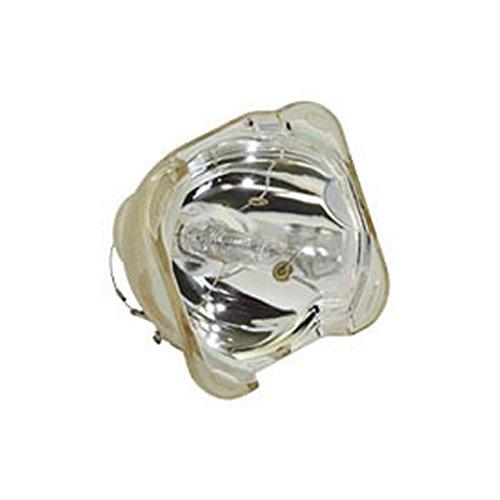 Digital Bare Bulb - 3