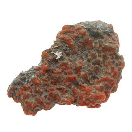 Dinosaur Bone Fossil CrystalAge