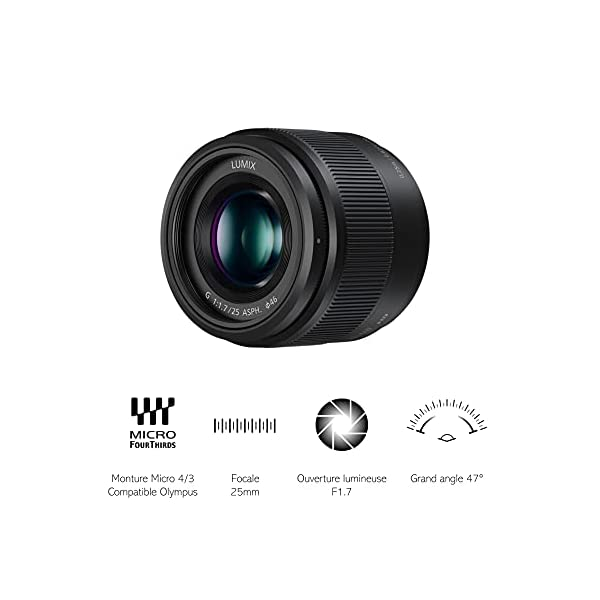 RetinaPix Panasonic Camera Accy H-H025E-K 25mm Lense