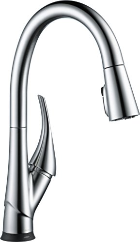 Delta Esque Single-Handle Pull-Down Kitchen Faucet with Touch2O  Technology Arctic Stainless