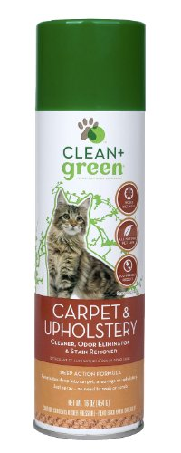 Clean + Green Carpet and Upholstery Pet Odor and Stain Remover for Cats, 16-Ounce