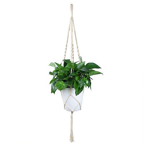 WITUSE cotton plant hanger cactus cotton plant holder,Han...