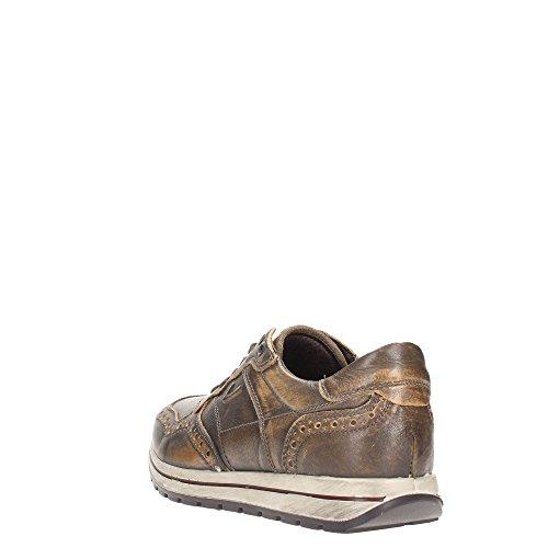 Igi&Co 47652 Sneakers Uomo Pelle Cognac Cognac 40