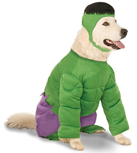 Marvel Universe The Incredible Hulk Big Dog Boutique Costume, XXX-Large