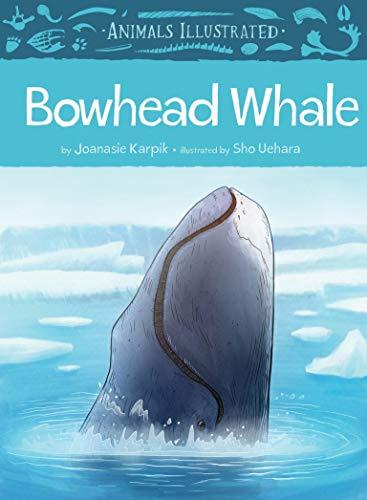 (Animals Illustrated: Bowhead)