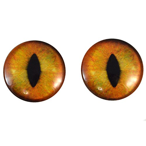 Megan's Beaded Designs 40mm Pair of Large Realistic Orange Cat Glass Eyes, for Jewelry making, Arts Dolls, Sculptures, and More by Megan's Beaded Designs