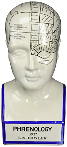 2H in. Porcelain Phrenology Head Statue ()