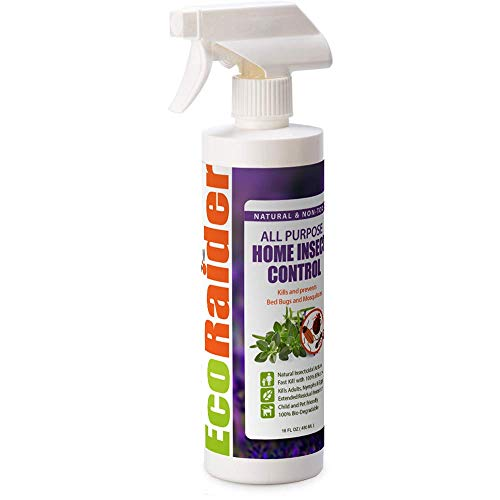 All Purpose Home Insect Control 16 OZ by EcoRaider