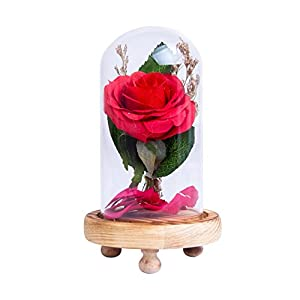Romantic Gift, Red Silk Rose With Fallen Petals, For Home Decor, Great Gift Birthday, Wedding, Anniversary 103