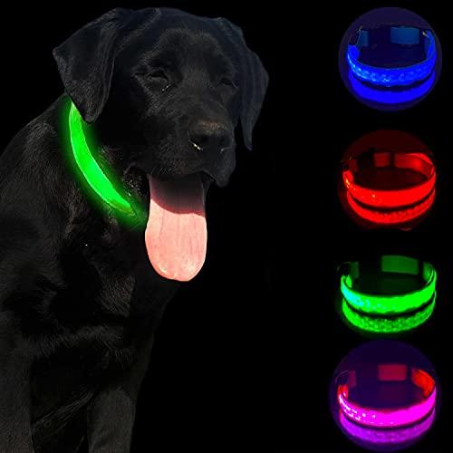 TURQUOISE AMERICA LED Dog Collar, Light up Dog Collar, Safety LED Collar, Blazing Safety LED Collar, USB Rechargeable…