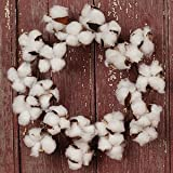 """The Country House Collection MINI Cotton Boll Floral Wreath (11"""" Outer Diameter)"""