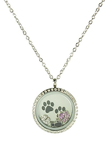 BG247 Stainless Steel Floating Locket Necklace with 6 Charms, 1 Plate, and Chain (Silver Rhinestone Circle)