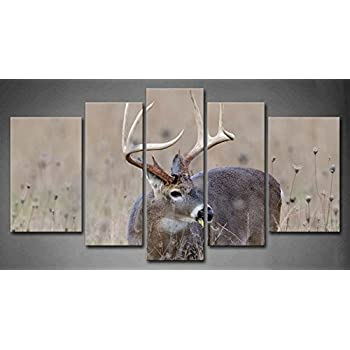 5 Panel Wall Art Whitetail Deer Buck In A Foggy Field Painting The Picture  Print On