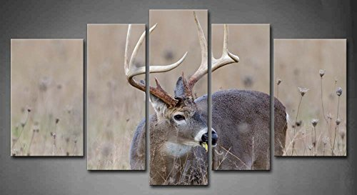 5 Panel Wall Art Whitetail Deer Buck In A Foggy Field Painting The Picture Print On Canvas Animal Pictures For Home Decor Decoration Gift piece