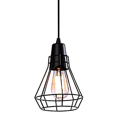 Industrial Metal Cage Pendant Displays Changeable Hanging Lighting Fixture
