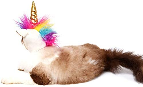 NACOCO Cat Unicorn Hat with Ear Hole for Small Dogs Puppy, Cat Costume Accessory for Halloween, Cosplay Mane Cap 19