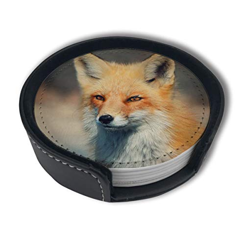 HBLSHISHUAIGE Gold Yellow Fox Coasters with Holder Set,Round Mugs and Cups Mat Pad for Drinks,Suitable for Home and Kitchen(6PCS)