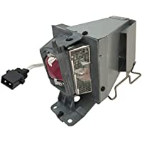 Litance Projector Lamp Replacement for Optoma BL-FU195C, HD142X, HD27