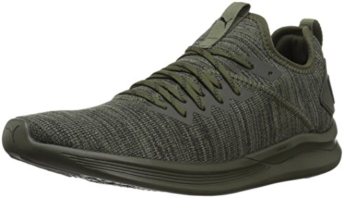 PUMA Men's Ignite Flash Evoknit Sneaker, Forest Night-Castor Gray Black, 9.5 M US
