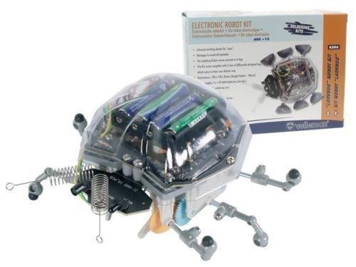 Ladybug Robot - 5