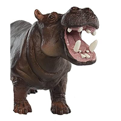 Safari Hippopotamus: Toys & Games
