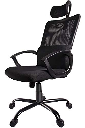 Smugdesk Ergonomic Office Chair Adjustable Headrest Mesh Office Chair Office Desk Chair Computer Task Chair (Black) - ()