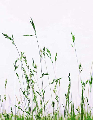 """Notebook: Meadow Grass Nature Green Summer Blades of Grass 8.5"""" x 11"""" 150 Ruled Pages"""