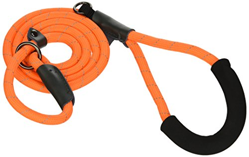 Bow & Arrow Pet Slip Lead Dog Leash, Reflective Nylon Rope Dog Leash for Training, Comfort Grip, 5 Feet, Neon Orange (Element Arrow)