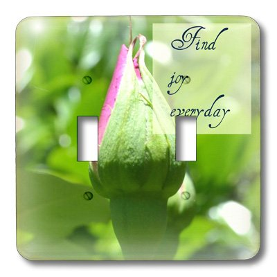 3dRose LLC lsp_31434_2 Find Joy Every Day Rose Inspiration Inspirational Quotes - Double Toggle Switch