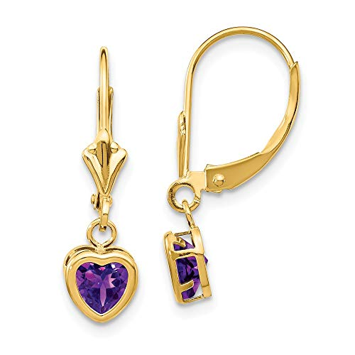 FB Jewels Solid 14K Yellow Gold 5mm Heart Amethyst Earrings