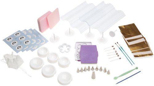 Wilton Flowers and Cake Design Student Kit- Discontinued By Manufacturer