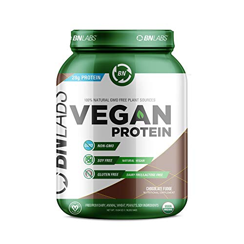 Organic Vegan Protein Powder - 28g Protein, RAW, Certified Organic, Non-GMO, Fully Natural Plant Based - No Dairy, Gluten or Soy - Low Carb, No Sugar - Made in USA (15 Serving, Chocolate)