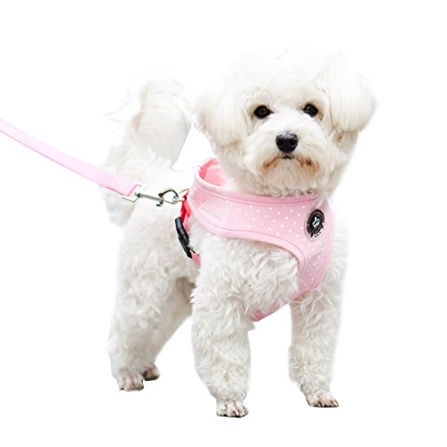 Pink Extra Small Soft Mesh Polka Dots Dog Harness with Matching Leash
