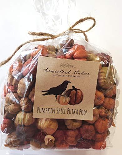 Fall Vase Fillers (Homestead Studios - Natural Pumpkin Spice Putka Pods or Mini Pumpkins - Perfect Bowl Filler, Craft Project, Weddings, Showers, Fall or Autumn)